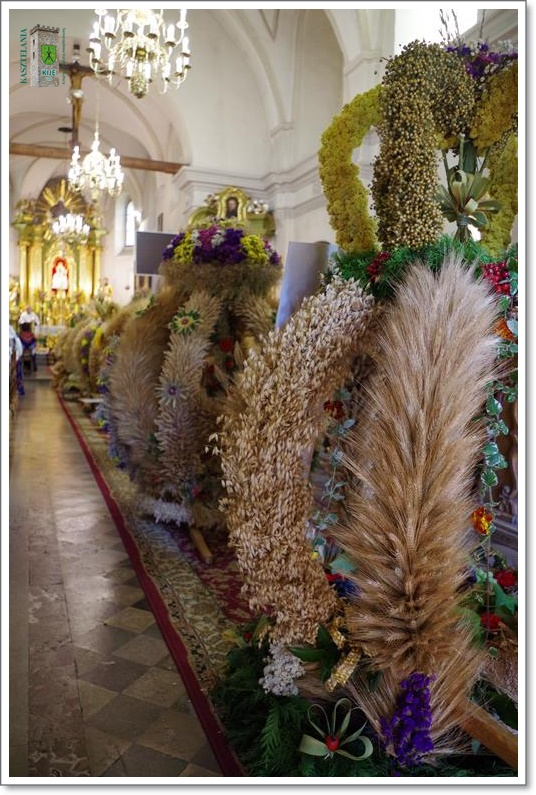 images/galleries/imprezy/2019/dozynki/foto/IMGP7447